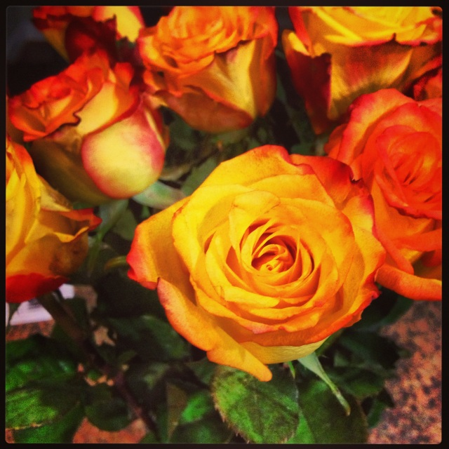 Beautiful flowers from my Valentine!