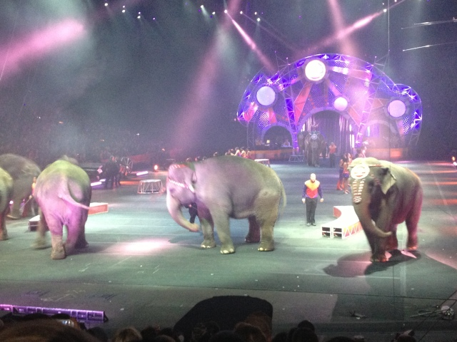 It was so much fun... I loved the poodles and the elephants.